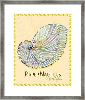 Paper Nautilus Framed Print by Kimberly McSparran