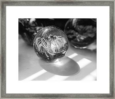 Paperweight And Morning Sun Framed Print by Jon Woodhams