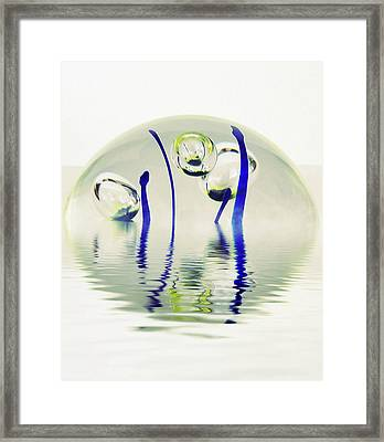 Paperweight No. 12-1 Framed Print