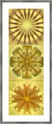 Papyrine Essentiality Flower  Id 16165-210427-16760 Framed Print by S Lurk