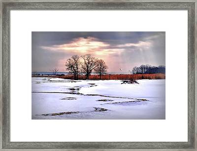 Par For Winter's Course Framed Print by Diana Angstadt