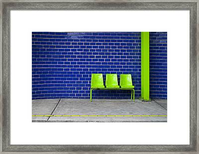 Paradaxochi Framed Print by Skip Hunt