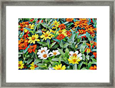 Parade Of Flowers One - Horizontal Framed Print