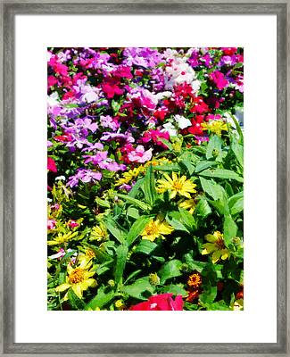 Parade Of Flowers Three - Vertical Framed Print