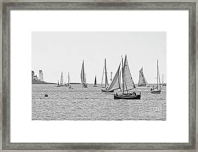 Parade Of Sail In Monochrome Framed Print by Terri Waters