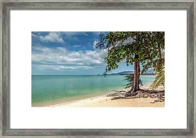Paradise Framed Print by Adrian Evans