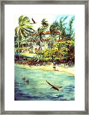 Paradise At Dorado Puerto Rico Framed Print