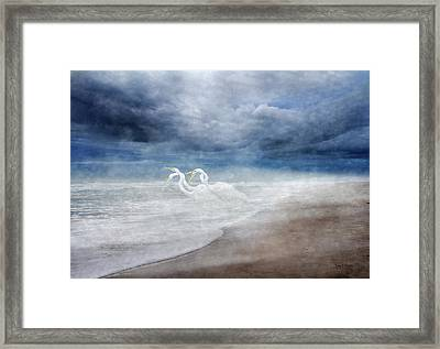 Paradise Dreamland  Framed Print