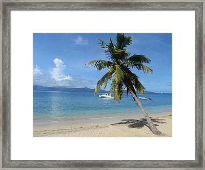 Paradise Framed Print by Ginger Howland