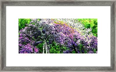 Paradise Hills Framed Print
