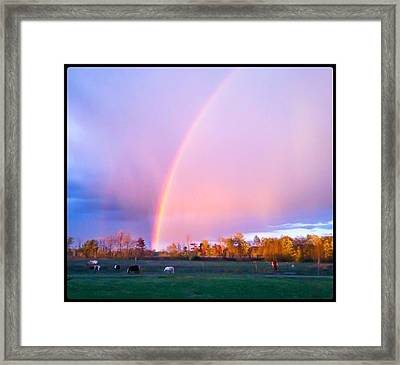 Paradise In The Pasture Framed Print