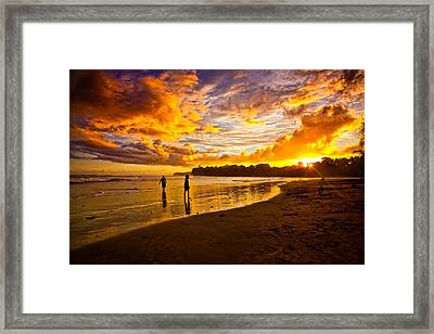 Paradise Framed Print by Iris Greenwell