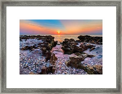 Paradise Lane Framed Print by Debra and Dave Vanderlaan