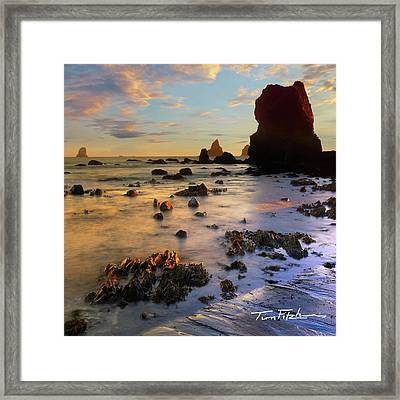 Paradise On Earth Framed Print