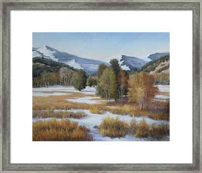 Paradise Framed Print by Paula Ann Ford