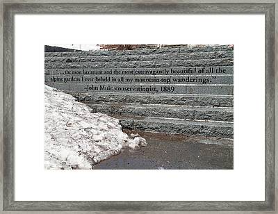 Paradise Steps In Spring Framed Print