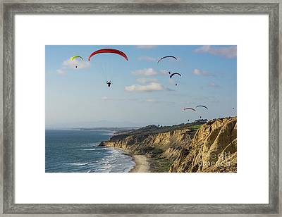 Paragliders At Torrey Pines Gliderport Over Black's Beach Framed Print