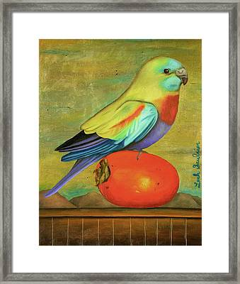Parakeet On A Persimmon Framed Print by Leah Saulnier The Painting Maniac