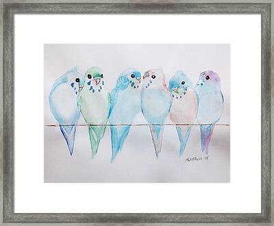 Parakeets Framed Print by Edwin Alverio
