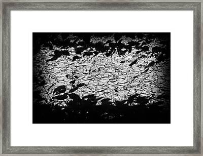 Parallel Botany #52250 Framed Print by Andrey Godyaykin
