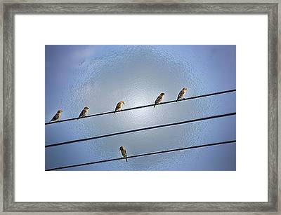 Parallel Lines Framed Print