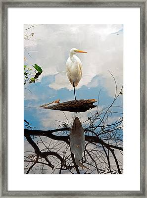 Parallel Worlds Framed Print by Christopher Holmes