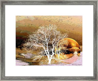Framed Print featuring the photograph Parallel Worlds by Joyce Dickens
