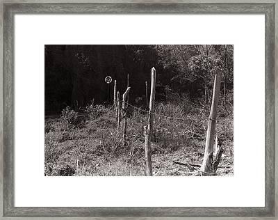Paranapiacaba Framed Print by Nelson Caramico