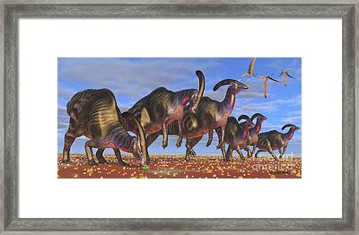 Parasaurolophus Herd Framed Print by Corey Ford
