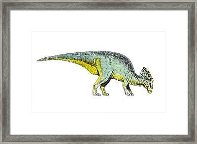 Parasaurolophus Framed Print by Michael Vigliotti
