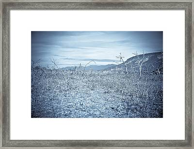 Parched Framed Print by Keith Sanders