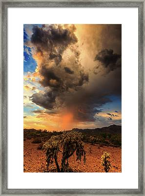 Framed Print featuring the photograph Parched by Rick Furmanek