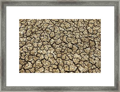 Parched Soil Framed Print by Todd Klassy