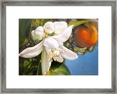 Parfum D Framed Print by Muriel Dolemieux