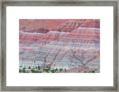 Framed Print featuring the photograph Paria Canyon by Chuck Jason