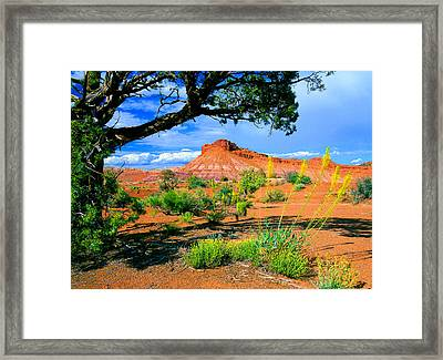 Paria Wilderness Framed Print
