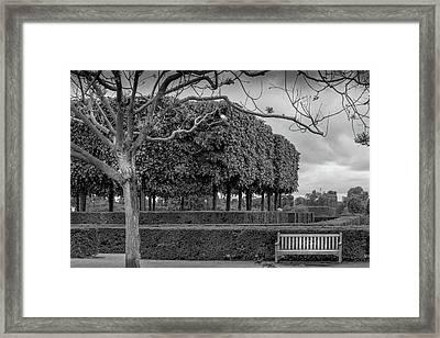 Paris Park In Early Spring Framed Print