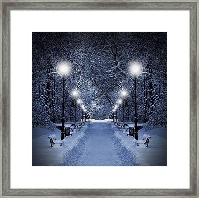 Park At Christmas Framed Print