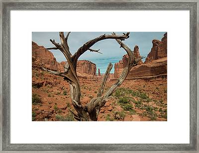 Framed Print featuring the photograph Park Avenue by Gary Lengyel