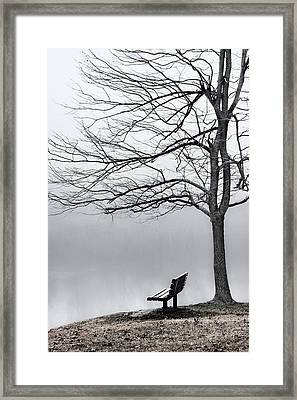 Park Bench And Leafless Tree In Fog - Hi-key Framed Print