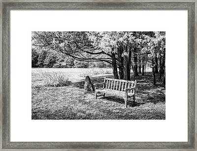 Park Bench Framed Print by James Barber
