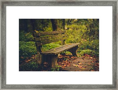 Park Bench Framed Print by Shane Holsclaw