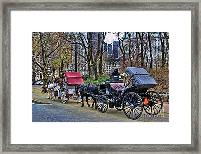 Park Carriage  Framed Print by Chuck Kuhn