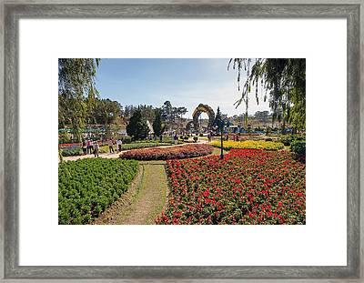 park DaLat Framed Print by Nguyen khac Thanh