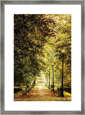 Framed Print featuring the photograph Park Lane by Jaroslaw Grudzinski