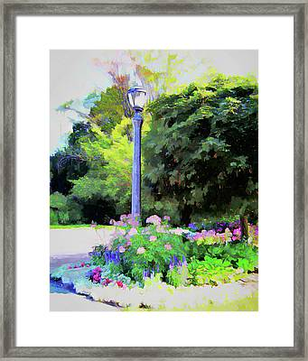 Park Light Framed Print