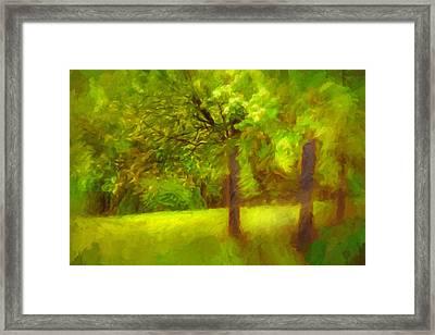 Park Framed Print by Lutz Baar
