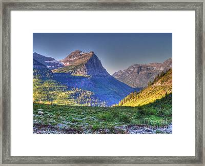 Park Meadow Framed Print by David Bearden