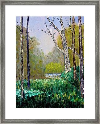 Park Meadow Framed Print by Stan Hamilton