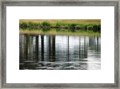 Park Reflections Framed Print